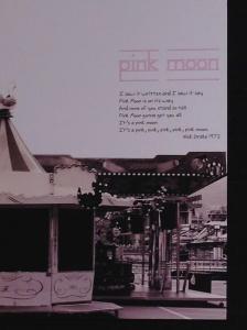 Pink Moon by Elena Zuccollo