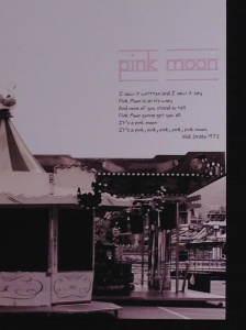 Pink Moon by Elena Zuccollo