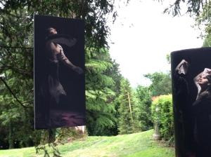Elisabetta Roan - Danza con luce